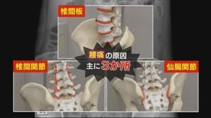NHK『スゴ技Q』